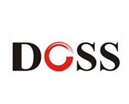 毅廷合作伙伴-DOSS